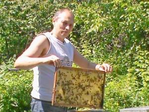 купить мёд у пасечника